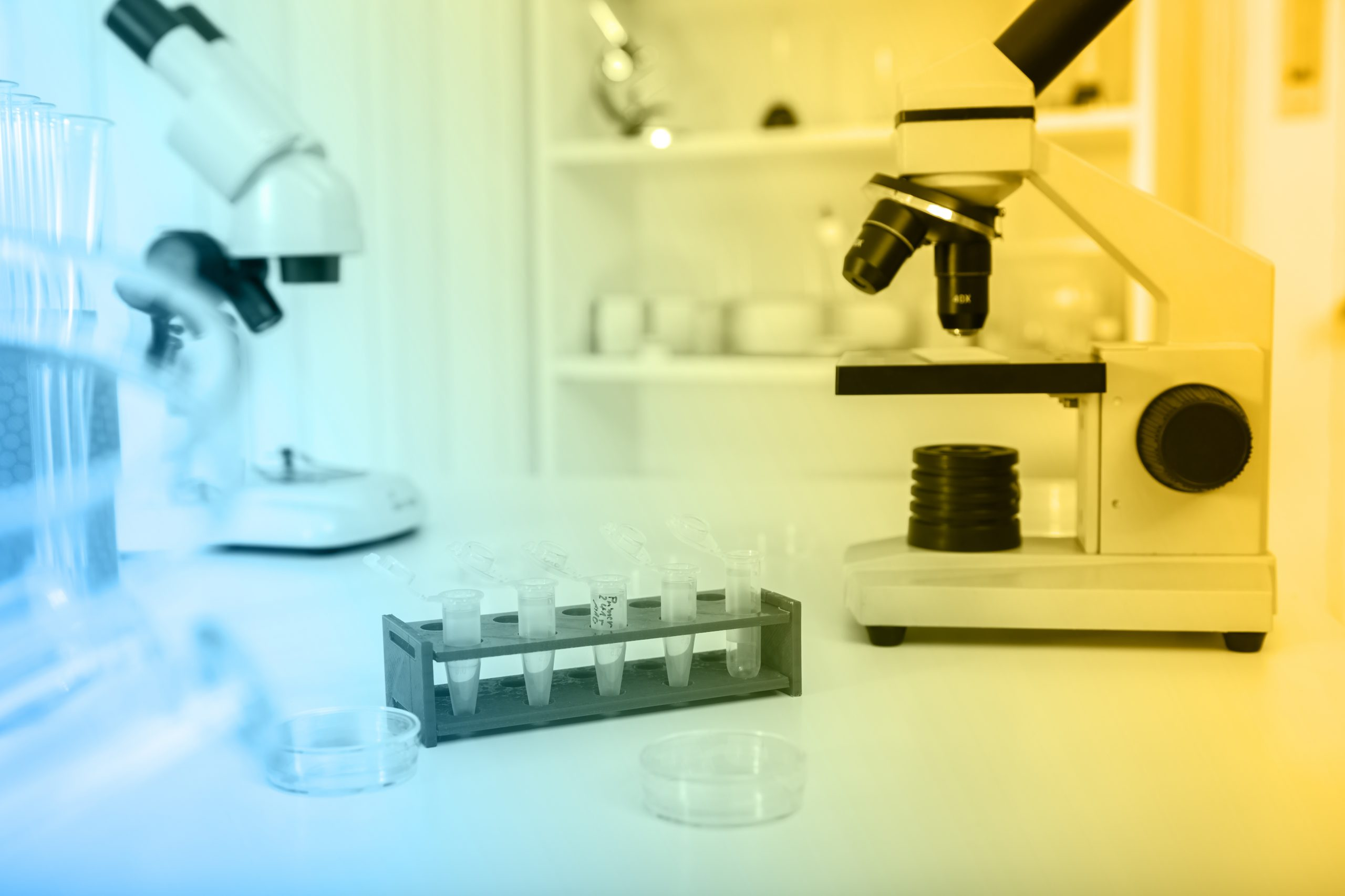 How to Choose the Perfect Microscope