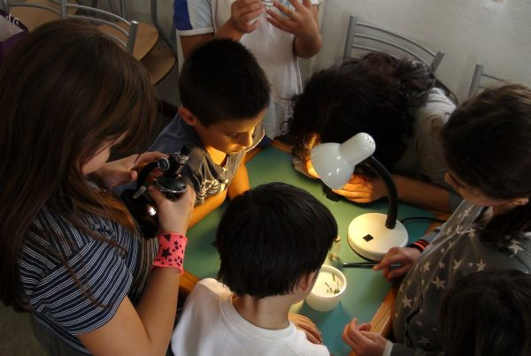 Microscopes for kids