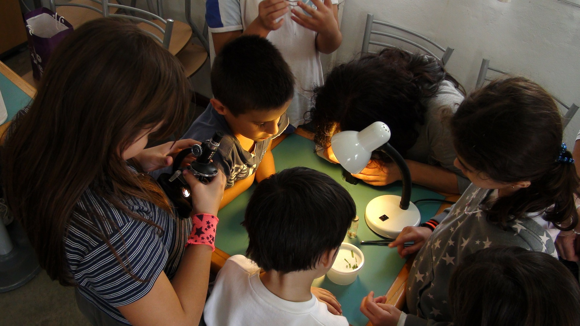 4 Reasons to Invest in a Microscope this School Year